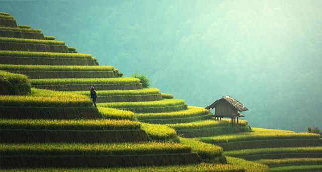 naturoplevelser på Bali