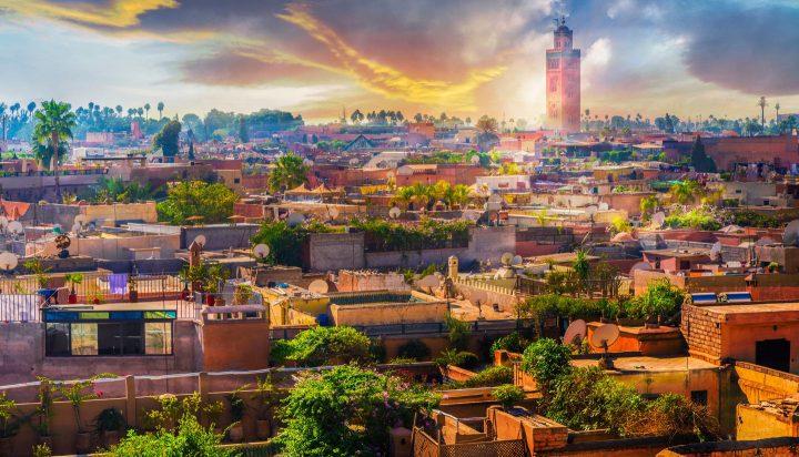Hvad skal du opleve i Marrakech?