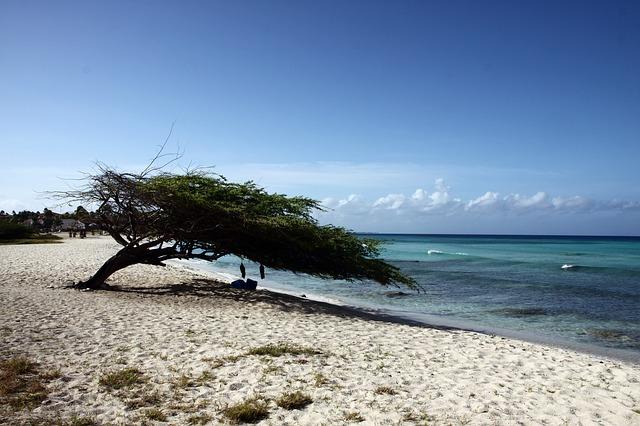 Rejse til Aruba