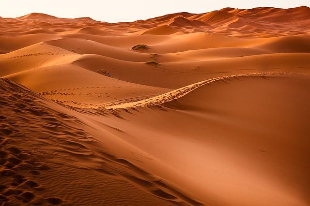 Rejseinspiration 2020 - Rejse til Marokko