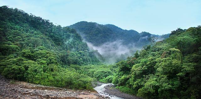 Rejse til Costa Rica