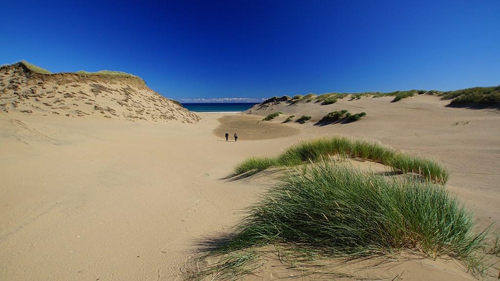 Gratis færger til de danske småøer denne sommer