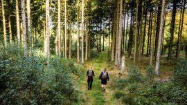 Aktiv Ferie til fods: 10 smukke vandreture i Danmark