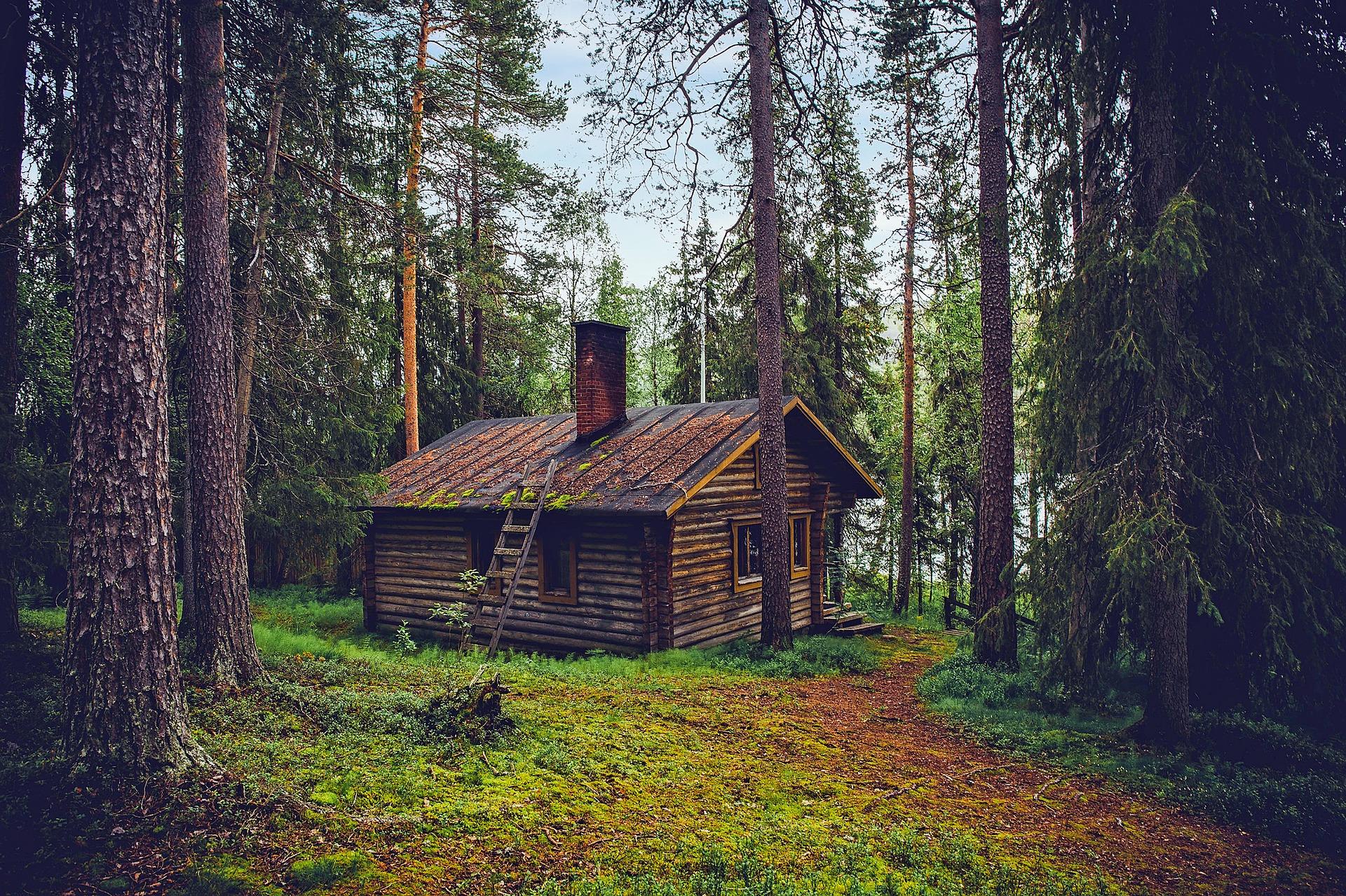 Derfor skal du købe et dansk sommerhus