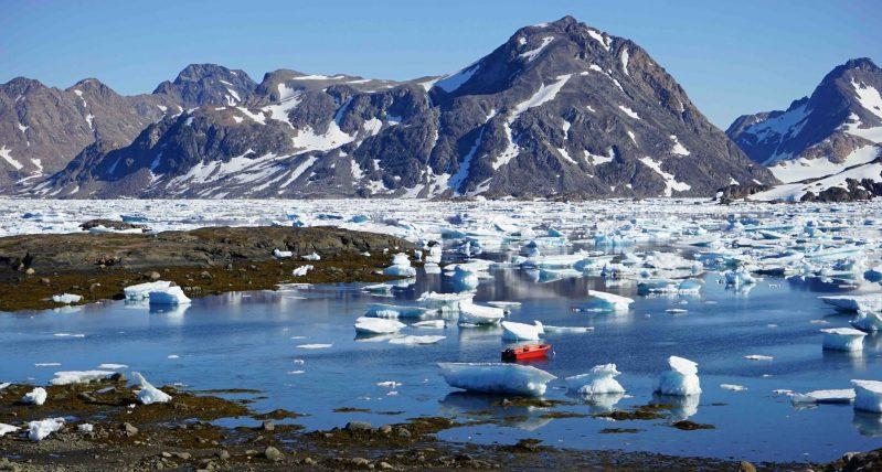 guide til Grønland