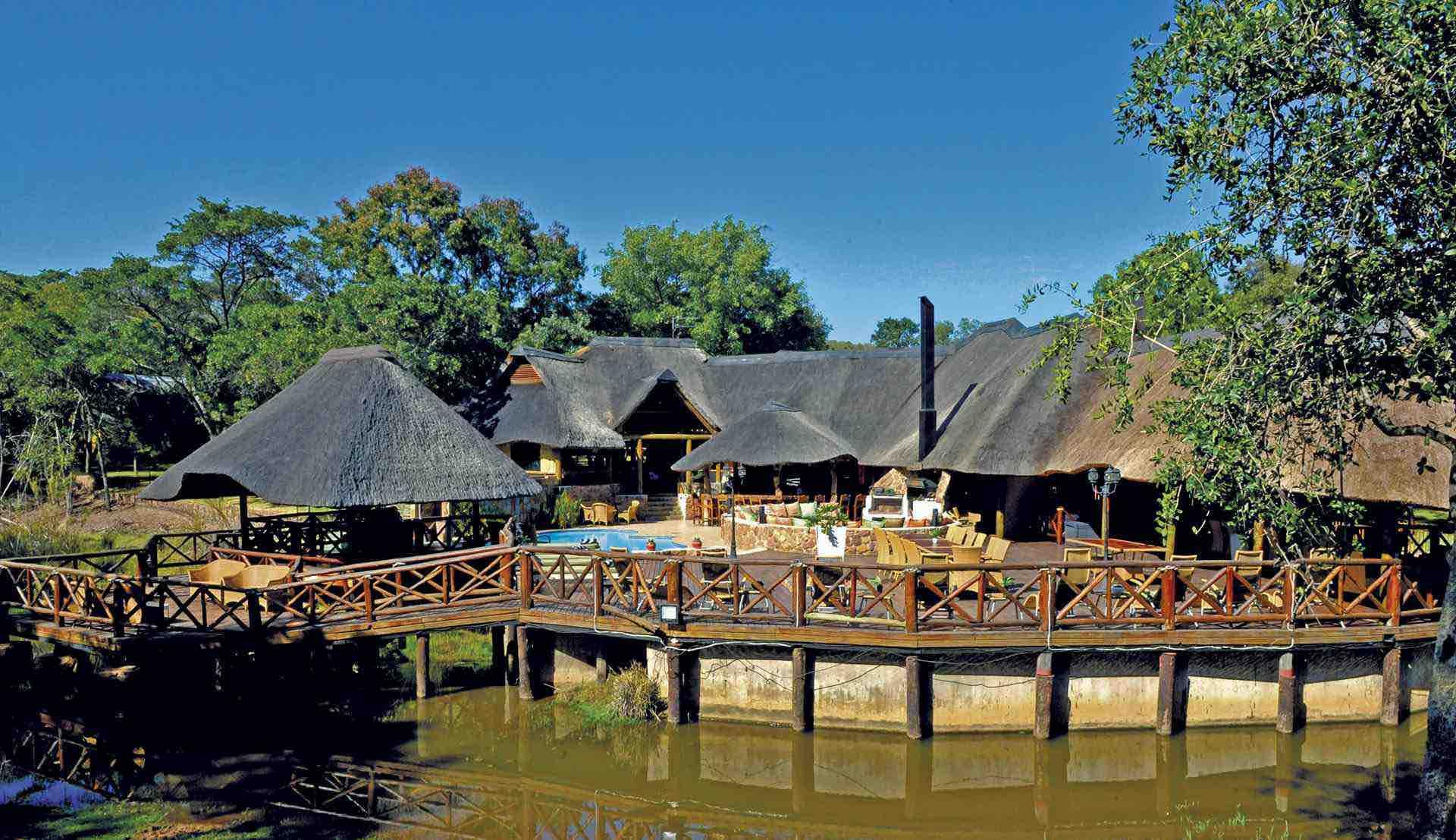Luksussafari på Matswani Lion Lodge