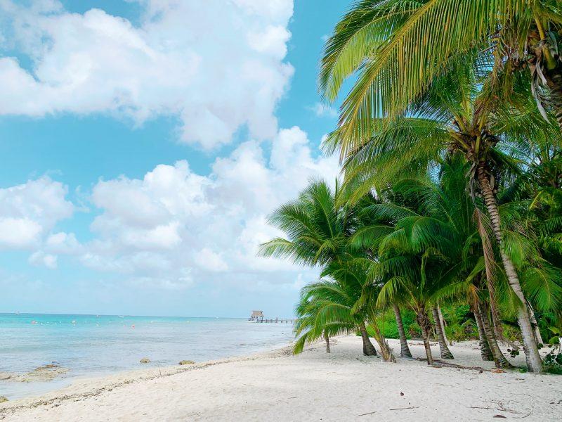 Tag på en festlig rejse til Sunny Beach