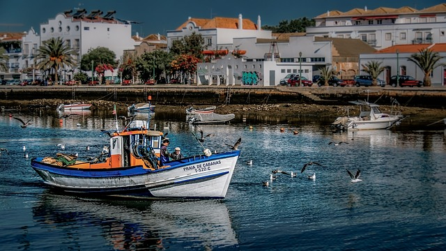 Tag på vinterferie i Portugal